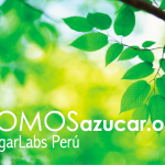 somosazucar-sugarlabs